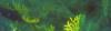 Vlcsnap-2016-08-23-19H09M49S198