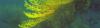 Vlcsnap-2016-08-23-19H10M14S234