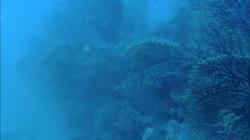 scogliera-sommersa11