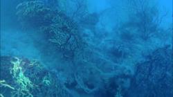 scogliera-sommersa12