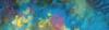 Aragosta-2016-12-28-17H04M12S249-1
