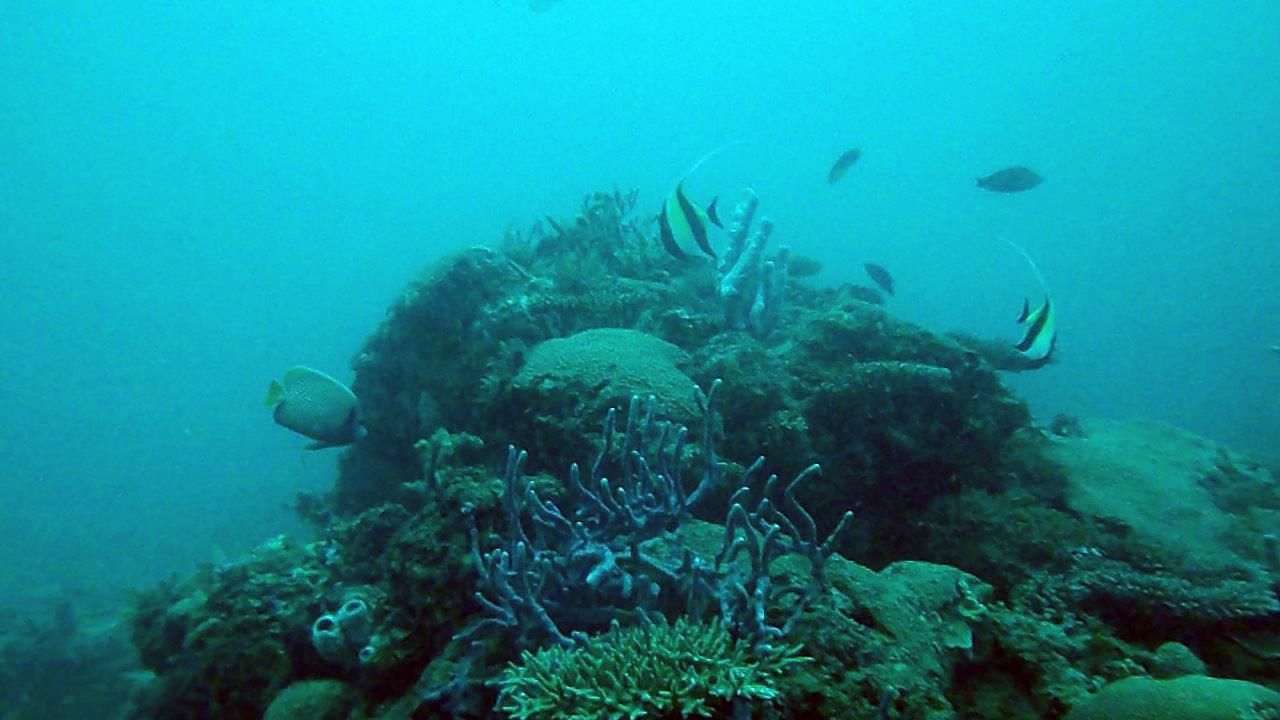 Nosy Be Madagascar Barriera Corallina Ii Barrier Reef