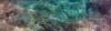 Vlcsnap-2017-06-25-08H57M17S70