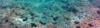 Vlcsnap-2017-06-25-08H58M30S35