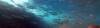 Muggine-2017-08-16-17H57M05S129