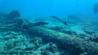 il Pesce Trombetta