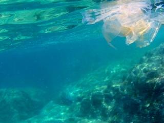 Plastica - Plastic - Intotheblue.it