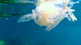 Un Mare di Plastica…?!