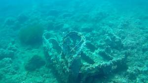 A Strange Wreck - intotheblue.it