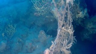 Le reti da pesca perse sono un danno ambientale