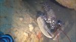 Astice europeo - Homarus gammarus - European lobster - intotheblue.it